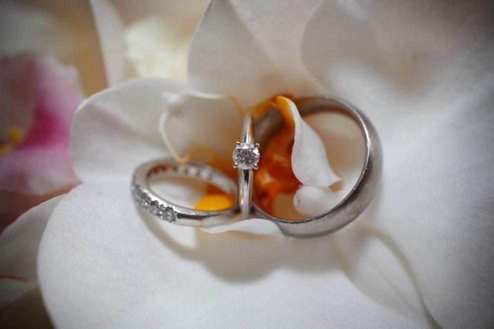 rings on white flower