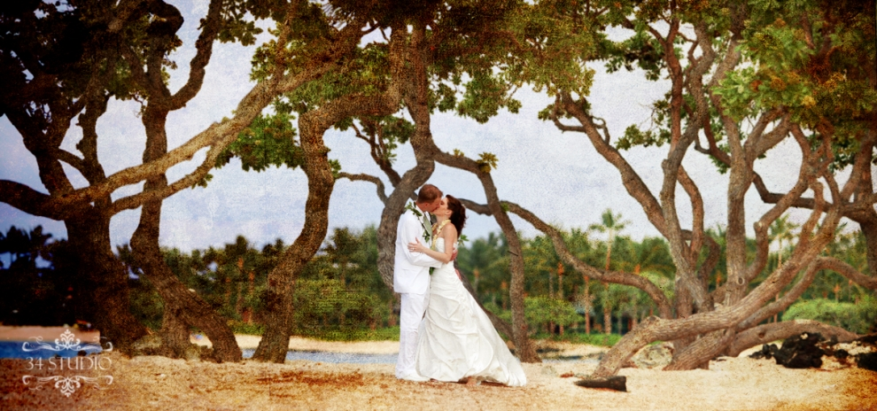 hawaiian trees and wedding couple